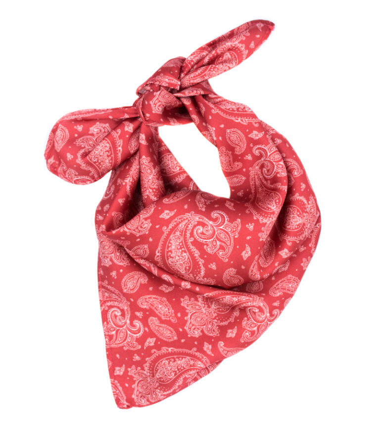 SunSet Go The Getaway Scarve Red Paisley